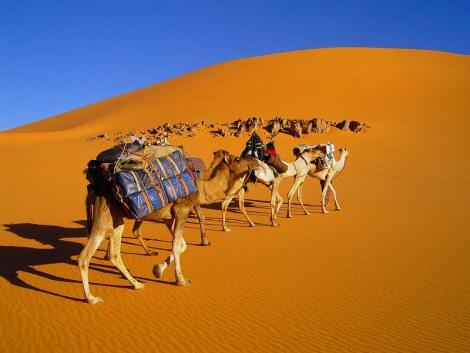 libye-caravane